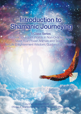 Shamanic Journey Lessons